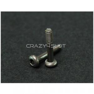 Motor Mount M2 T6 x10mm Titanium Screws