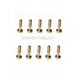 Body Shell Metric Screws 5.5mm M2