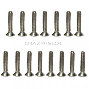 Stainless Steel Phillips Head Screws M2 x 10mm