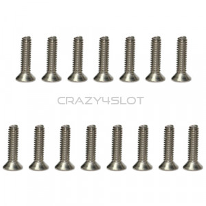 Stainless Steel Phillips Head Screws M2 x 8mm